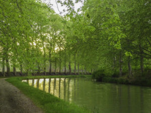Canal Barge, Canal du Midi, Toulouse, France