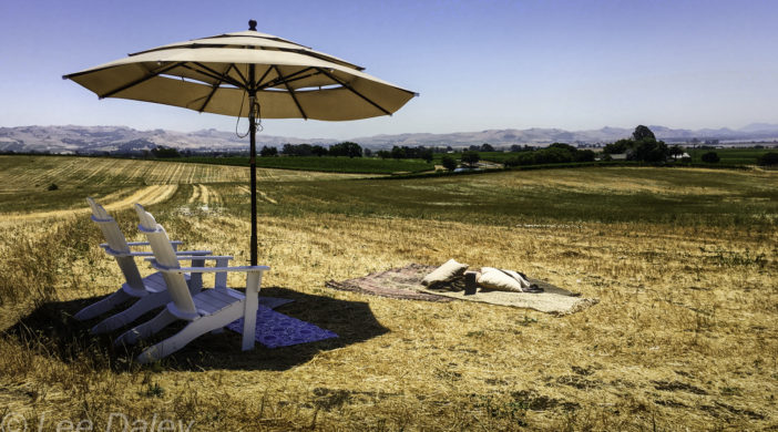 Napa Valley's Liana Estates Opens, Napa Valley, Napa Winery, Napa Liana