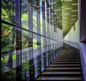 Best places to kiss in San Francisco, de Young Museum stairway