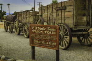 Twenty mule teams hauled borax 165 miles down Death Valley to Mojave in the 1890s