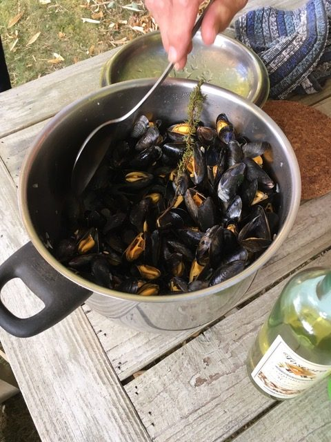 Moule au fou, Eclade, a specialty of the Charente region of France,French dining with friendship on mussels, La Rochelle, France