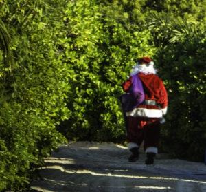 Santa visiting beach goers on Half Moon Cay, Holland America Lines, ms Nieuw Amsterdam shore excursion