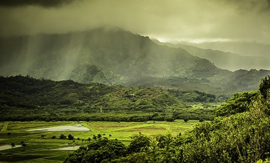 Mountain Mist near Poipu, photo: John Sundsmo, Kauai, Hawaii