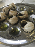 Escargot, Floating the Loire Canal on the Renaissance Barge, Burgundy, France