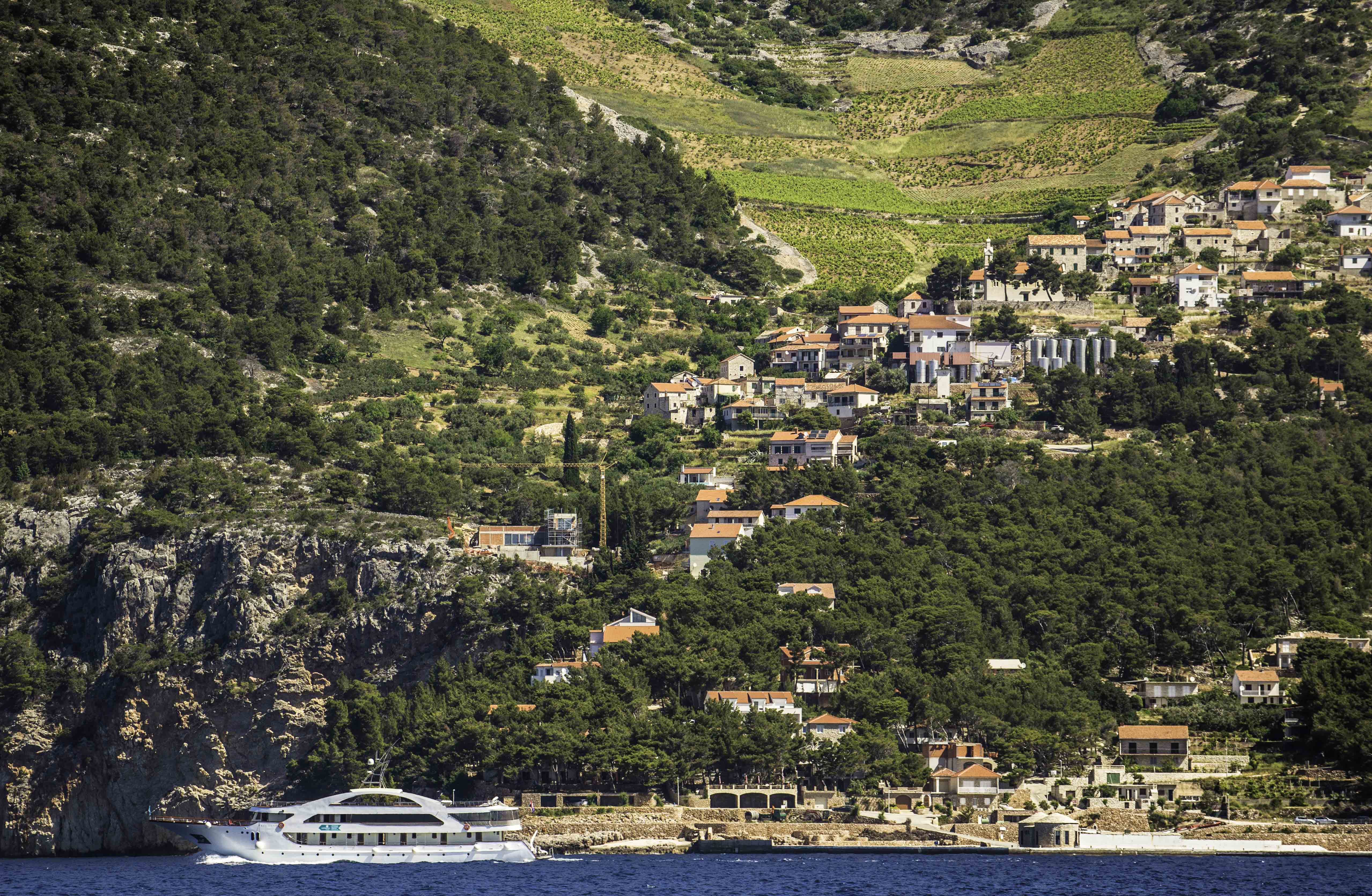 Wine, Olives and Cruise Ships - the life of the Dalmatian Islands, Hvar, Croatia