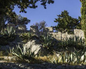 Botanical Garden, Hvar Old Town, Hvar Island, Croatia, Dalmatian Islands, Aegean Sea, Katerina Lines cruise, Croatia Islands Cruise