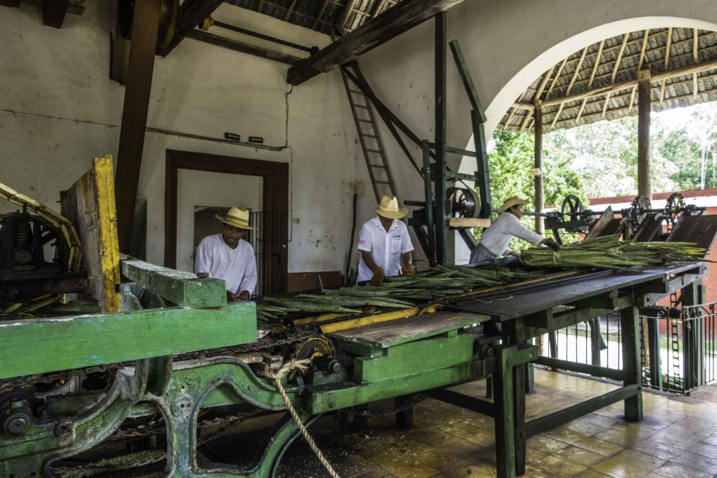 19th century machinery for extracting henequen fiber from Yuca leaves in production of hemp (sisal) rope, Hacienda Sotuta de Peón, Campeche, Mexico