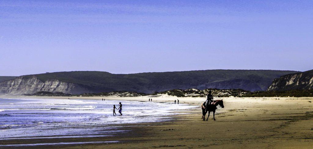 Point Reyes Beach horseback riding, Point Reyes National Seashore, Point Reyes, San Francisco Bay Area, Marin County, Northern California, California