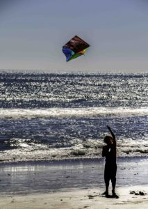 Kite flying on Point Reyes Beach, Point Reyes National Seashore, San Francisco Bay Area, Northern California, California