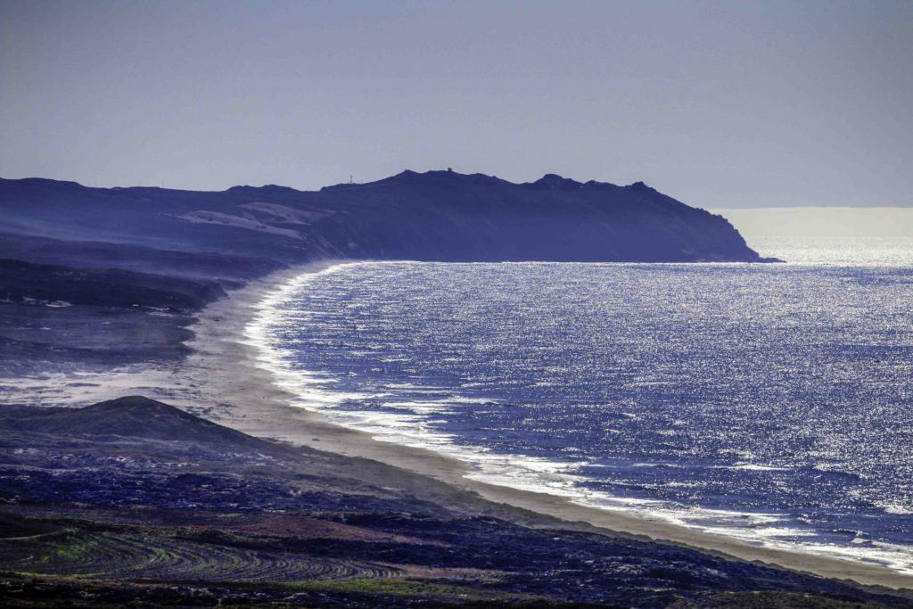 Point Reyes Beach, Point Reyes National Seashore, San Francsico Bay Area, Marin County, Northern California, California