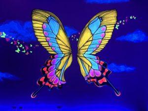 Butterfly Room, Selfieville, Golden State Theater, Monterey, California