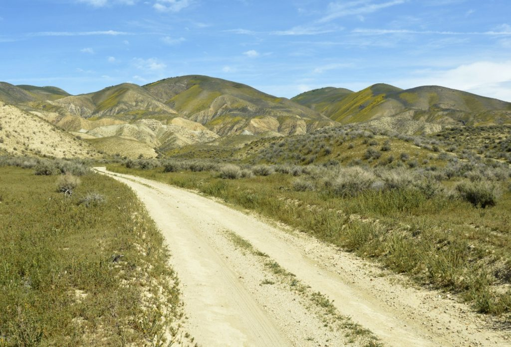 Elkhorn Road in the Temblor foothills in early summer, Carrizo Plain National Monument, California