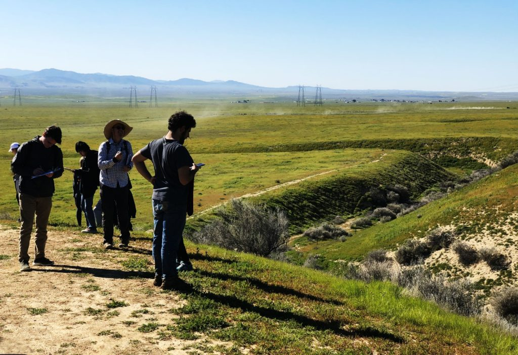 Wallace Creek's distinctive offset stream bed attracts geology pilgrims from around the world, Carrizo Plain National Monument, California