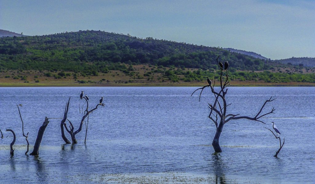 The Mankwe Dam at the center of the Pilanesberg National Park, South Africa