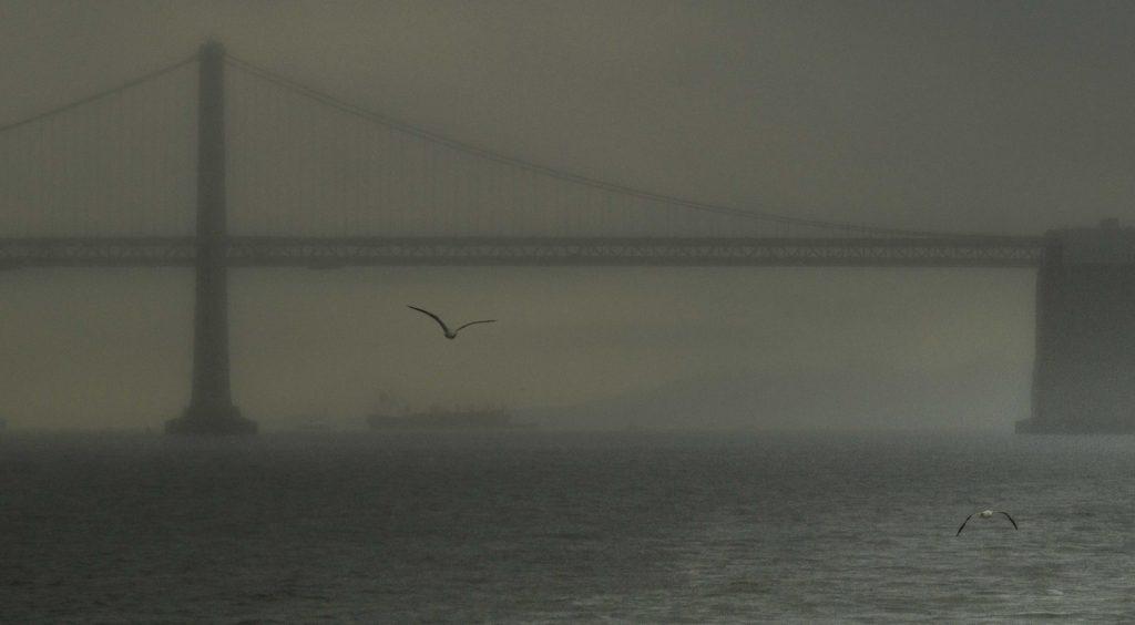 Fog on the Golden Gate Bridge viewed from Fort Baker, Marin Headlands, Golden Gate Recreation Area, San Francisco, California