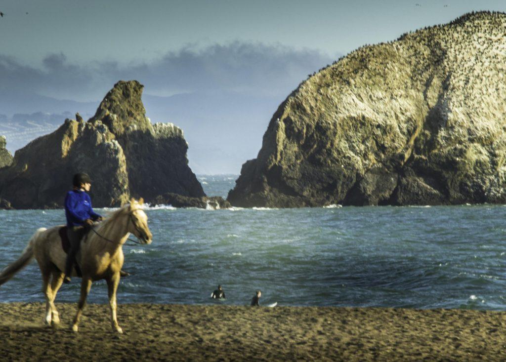 Turf'n on Rodeo Beach, Marin Headlands, Golden Gate National Recreation Area, San Francisco, California