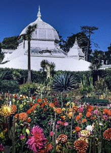Golden Gate Park, Botanical Garden, San Francisco, California