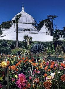 Golden Gate Park, Botanical Garden, San Francisco, California