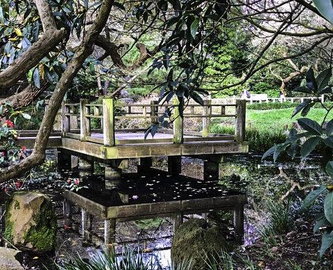 Golden Gate Park, Moon Garden, San Francisco, California