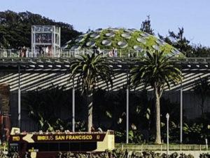 Golden Gate Park, California Academy of Science, San Francisco, California