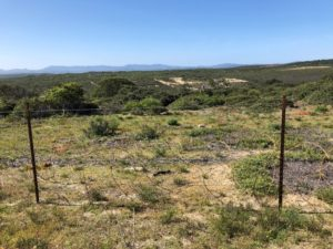 Fort Ord National Monument, Monterey, California