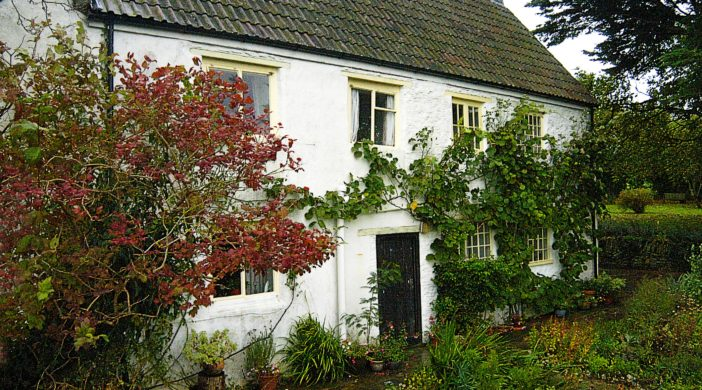 Steinbeck, Discove Cottage, Somerset, UK