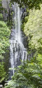 Wailua waterfall, Road to Hana, Maui, Hawaii