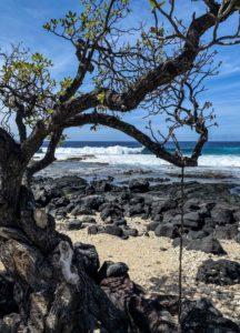 Kohanaiki Beach, Kohala, Big Island, Hawaii