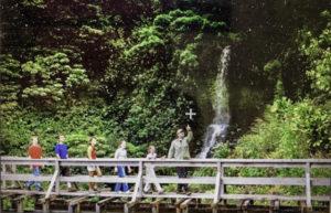 Flume Bridge, Kohala, Big Island, Hawaii (Photo courtesy of Hawaii Forest & Trail)