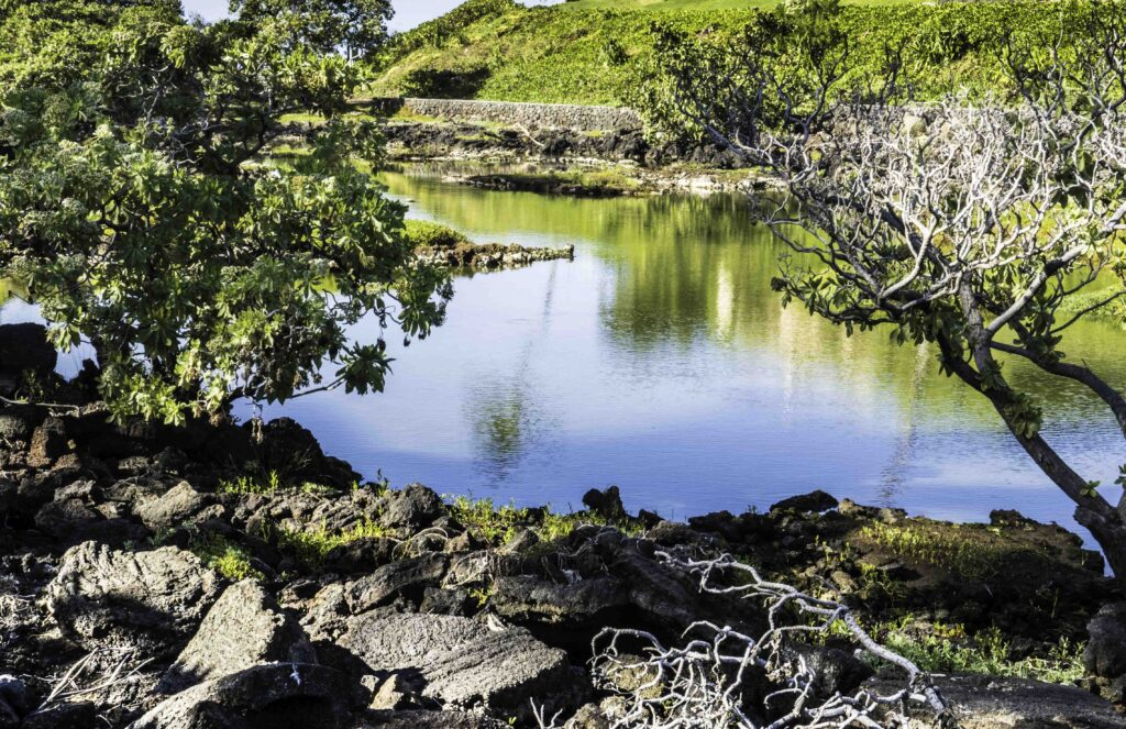 Waikoloa Anchialine Pond Preservation Area, Big Island, Hawaii